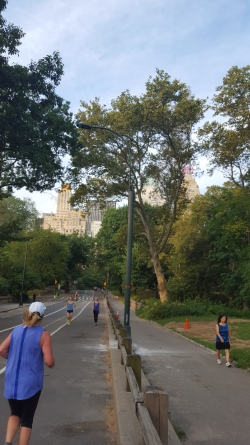 Felt very safe running in Central Park. However, it was far hillier than I expected.